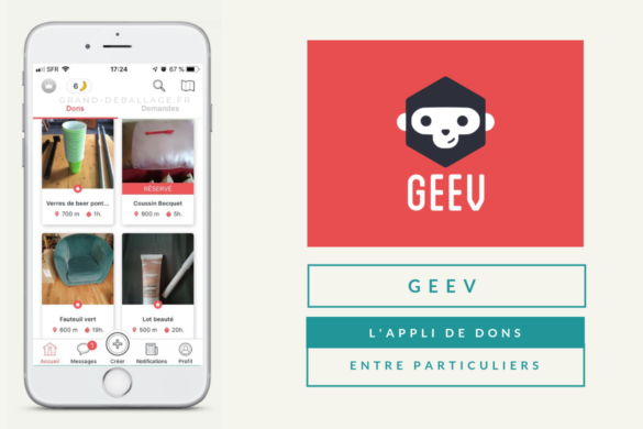 avis sur l'application GEEV