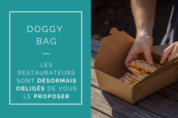 reglementation doggy bag 2021